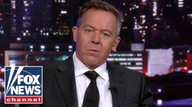 Gutfeld: This is the Democrats' experiment in action